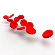 Preveč  beljakovin v krvi?